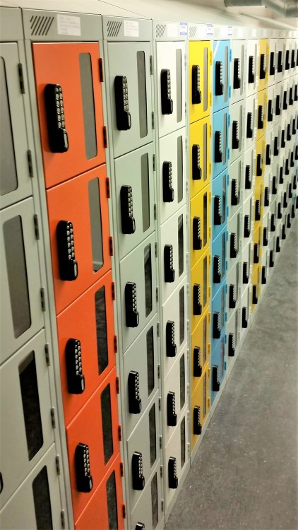 Vision panel lockers are a great method of internal staff theft prevention